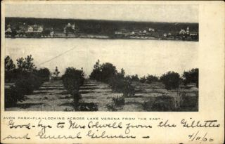 Avon Park FL Looking Across Lake Verona c1905 Postcard