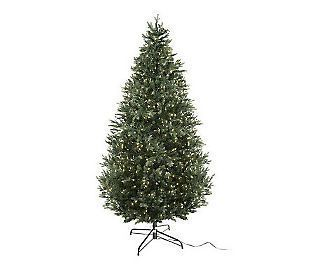 Bethlehem Lights Ready Shape 6 5 Noble Fir Tree w Instant Power