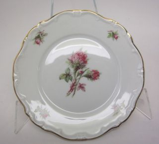 Hertel Jacob Porzellan Bavaria Germany MOSS ROSE 7 1/2 Salad Plate