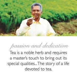 Dilmah Earl Grey Flavoured Tea 50 Tea Cup Bags x 02 Packs