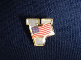 Lavender V Victory USA American Flag Lapel Pin Great WOW