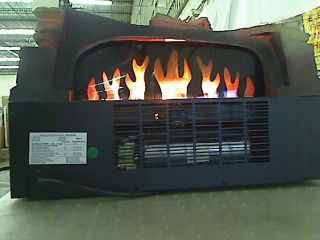 DURAFLAME 20 in Electric Fireplace Insert