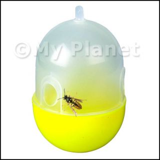 Wasp Fly Flies Bee Insect Hanging Trap Catcher Killer No Poison