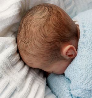 Reborn/Newborn Baby Boy Doll   Benne Sculped by Karola Wegerich