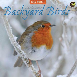 Backyard Birds Big Print 2013 Wall Calendar