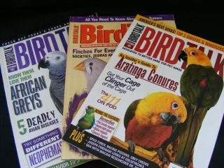Issue 3 Magazines Finches Greys Aratinga Conures Bird Supplies