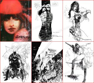 Bill Sienkiewicz Poison Ivy Elektra Batgirl Batman Wonder Woman 2010