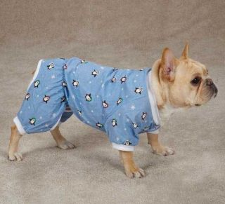 Dog Blizzard Buddies Pajamas PJs pjs Casual Canine Top Pet XXS   M