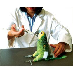 Bird Restrainer Large Medicate Exam Nail clipping Feeding Wings