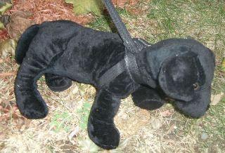 Barking Pet Dog on A Leash Plush Black Doggie