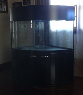 92 gallon CORNER bowfront FISH TANK W STAND Canopy Reef Ready drilled
