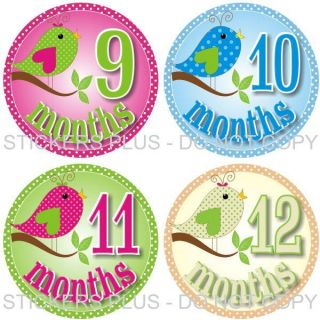 Baby Girl Monthly Onesie Photo Stickers Birds on Branch