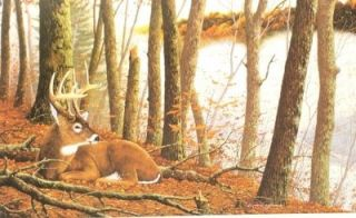 gallery now free robert smith deer buck print secluded hideaway
