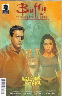 Buffy the Vampire Slayer Season 9 #16 Comic Book Cover A, IDW 2012 NEW