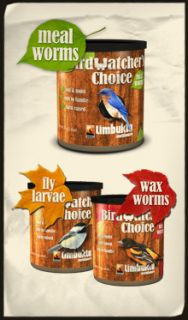 Birdwatchers Choice Canned Food Meal Worms 200 Can