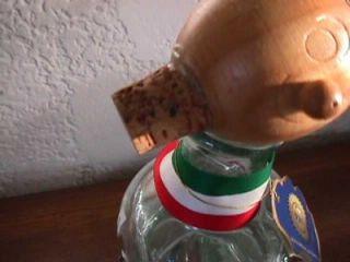 Vtg Resposado Tequila Casta Hand Blown Worm Decanter Bottle Aqua Glass