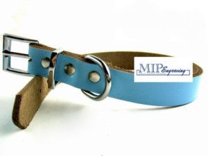 Personalized Genuine Leather Pet Dog Cat Collar Blue XS