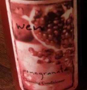 Wen by Chaz Dean Pomegranate Cleansing Conditioner 16 oz w Pump New