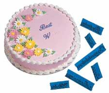 Wilton SCRIPT MESSAGE PRESS CAKE DECORATING TOOLS