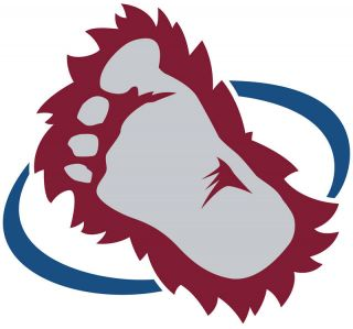 Colorado Avalanche Logo Window Wall Sticker Vinyl Car Decal Any Colors