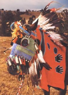 Native American Indian Horse Masks by Mike Cowdrey, Ned & Jody Martin