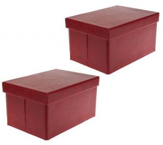 Small Collapsible Faux Leather Storage Boxes by Valerie —
