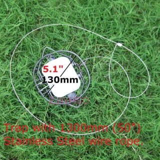 Pest Control Mouse Rat Rodent Steel Spring Snare Trap 50 Stainless