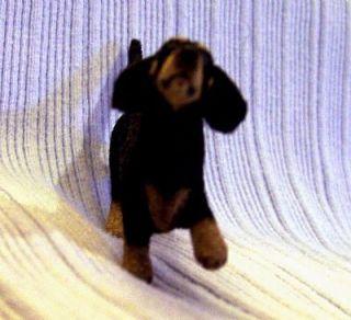 Original Alpaca Flocked Dachshund Dog EBSQ CammiS