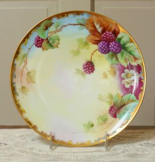 Arcy s Haviland Limoges Porcelain Plate with Hand Painted