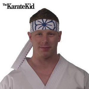 This headband will have you looking just like Daniel Larusso or Mr