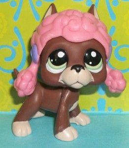 Pet Shop~#1519 PINK POODLE WIG CHOCOLATE GREAT DANE PUPPY DOG~P161 LPS