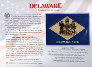 Delaware State Flag Willabee & Ward Patch & Panel