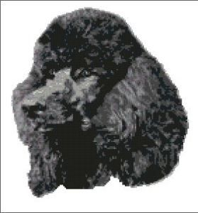 Poodle Dog Complete Counted Cross Stitch Kit 10 x 12