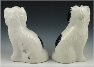Pair of 19th C Staffordshire Dog Figurines w RARE Green Collars