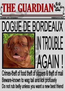 Dogue de Bordeaux Novelty Dog Sign Front Page