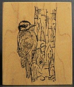 BIRD DOWNY WOODPECKER ON TREE TRUNK rubber stamp BY NORTHWOODS