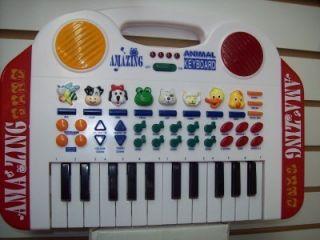 Electronic Music with Animal Keyboard Amazing Band