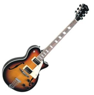 Johnson Delta Rose Hollow Body Archtop Electric Guitar   Sunburst