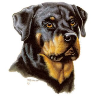 902A Rottweiler Dog Heat Transfer Shirt Fabric Iron On