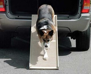 Portable Folding Dog Pet Step II Ramp 500 lb Petstep II