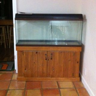 55 Gallon Fish Tank With Wood Stand 2017 Fish Tank