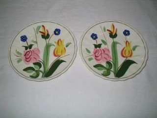 SOUTHERN POTTERIES BLUE RIDGE HAND PAINTED GARDEN LANE SALAD PLATES
