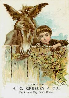 1890s Victorian Trade Card Advertising H C Greeley Co Dry Goods