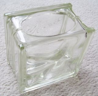 Glass Block Planter Fish Bowl Bare Root Plant Cuttings