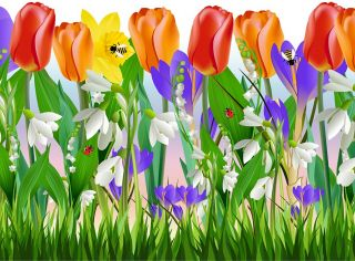 Grass Tulips Flowers Removable Wall Sticker Vinyl Decal Decor Border