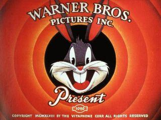 Vtg Warner Bros Looney Tunes Mens Embroided Shirt XL Bugs Daffy Taz