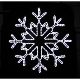 Holiday Lighting Specialists Star Snowflake Rope Light