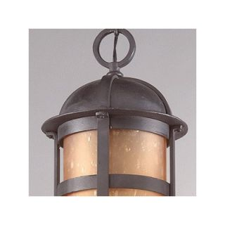 Troy Lighting Aspen Hanging Lantern in Natural Bronze   F9255NB