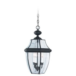Sea Gull Lighting Classic Outdoor Brass Pendant in Black