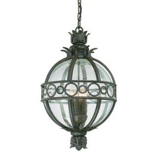 Troy Lighting Campanile Hanging Lantern in Campanile Bronze